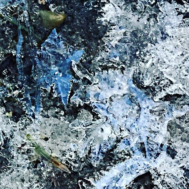 Jack_Frost_was_hard_at_work._Pretty_but_slippery.__northvancouver__lynncanyon__frozenwater__jackfrost