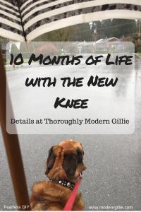 new knee,www.moderngillie.com
