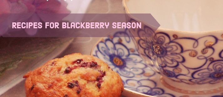 Delicious Recipes for Blackberry Season, www.moderngillie.com